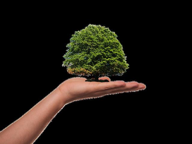 green niche clickbank