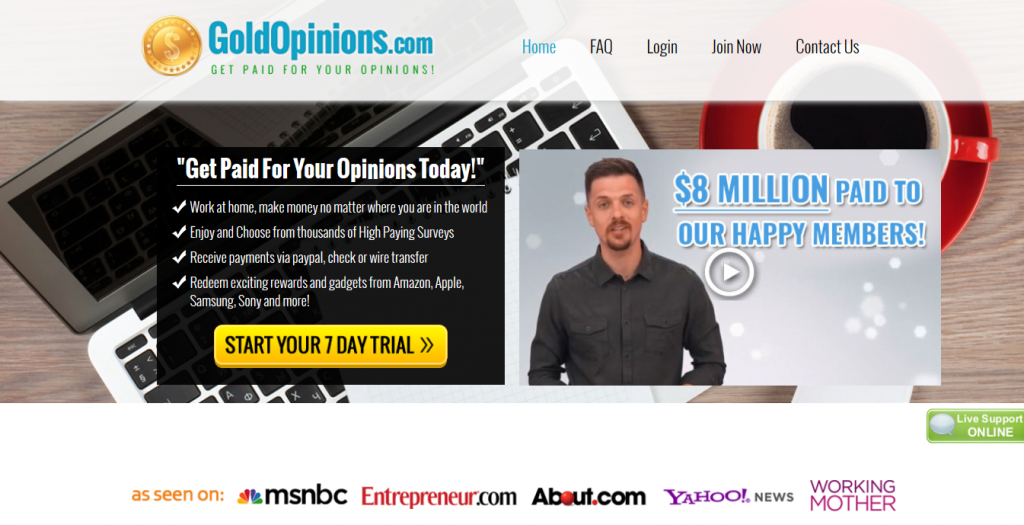 get paid for your opinions product
