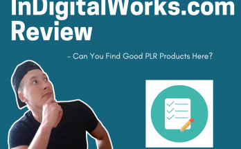 indigitalworks review